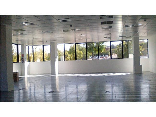 Oficina en alquiler en calle De Bruselas, Alcobendas - 348269904