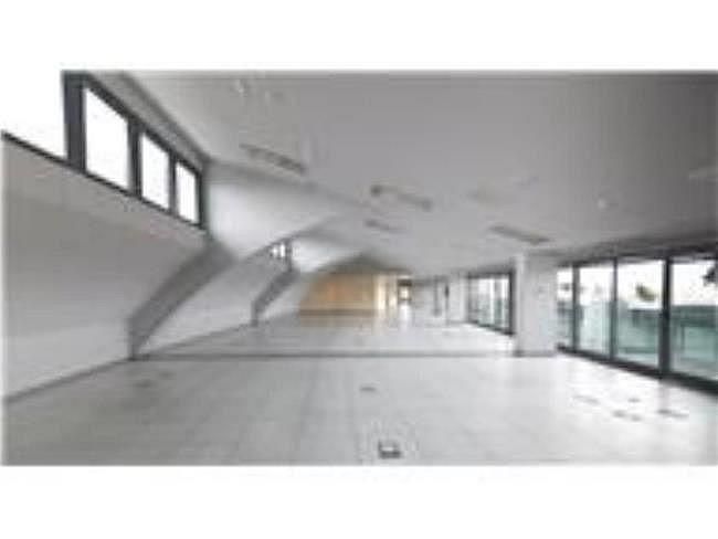 Oficina en alquiler en calle Lili Álvarez, Tres Cantos - 384509647