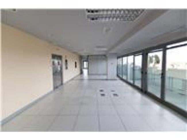 Oficina en alquiler en calle Lili Álvarez, Tres Cantos - 384509656