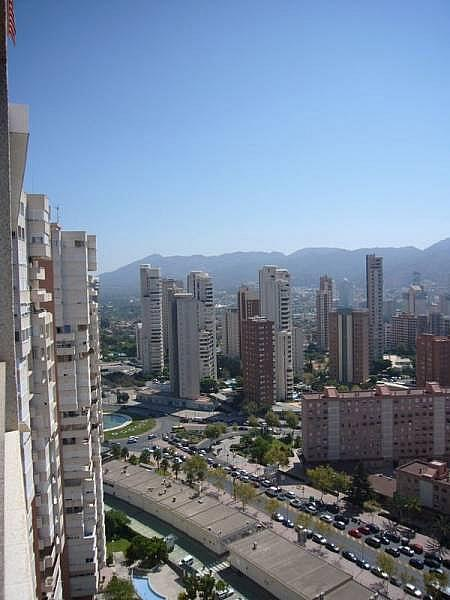 Foto - Apartamento en venta en calle Avenida Alfonso Puchades, Benidorm - 301248072
