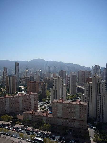 Foto - Apartamento en venta en calle Avenida Alfonso Puchades, Benidorm - 301248075