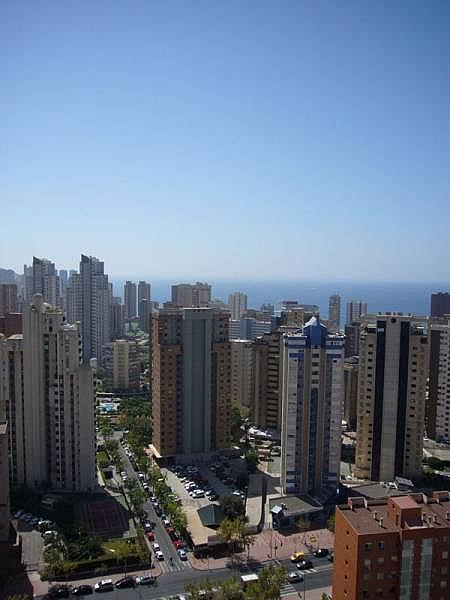 Foto - Apartamento en venta en calle Avenida Alfonso Puchades, Benidorm - 301248081