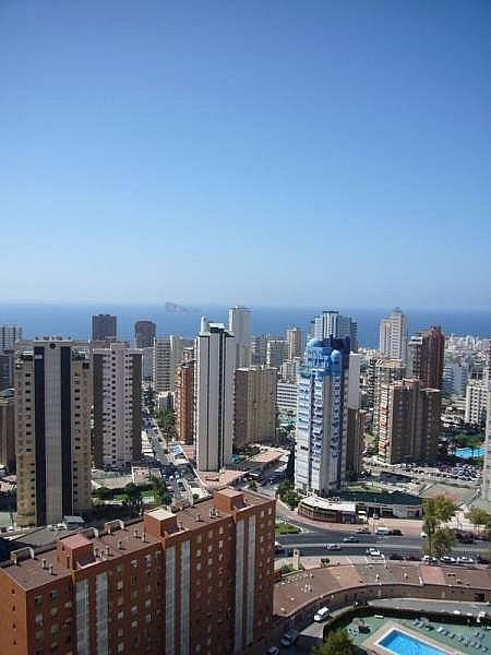 Foto - Apartamento en venta en calle Avenida Alfonso Puchades, Benidorm - 301248084