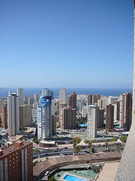 Foto - Apartamento en venta en calle Avenida Alfonso Puchades, Benidorm - 301248087