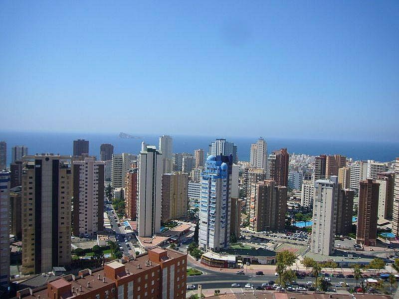 Foto - Apartamento en venta en calle Avenida Alfonso Puchades, Benidorm - 301248093