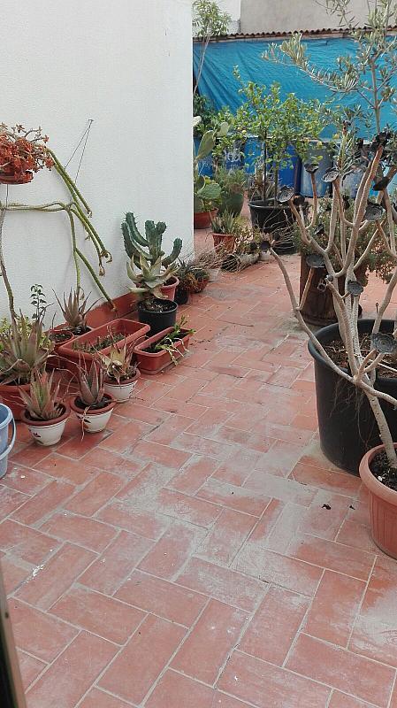 Piso en alquiler en calle ***, Les Roquetes en Sant Pere de Ribes - 308873389