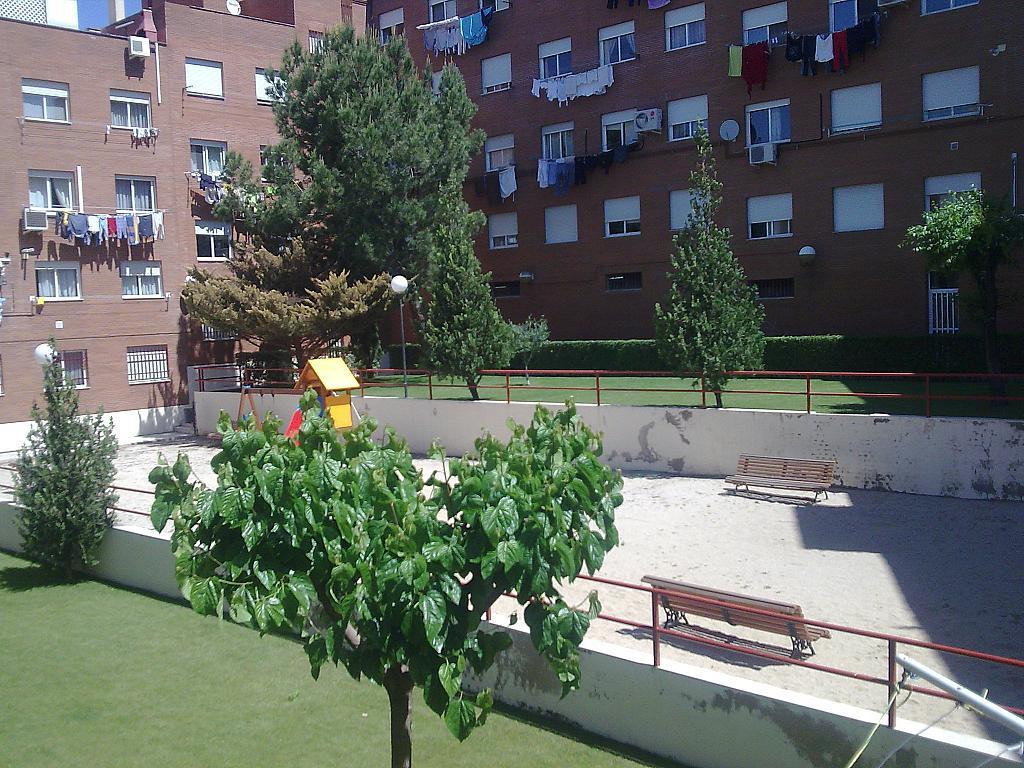 Zonas comunes - Piso en alquiler en calle Avila, Santa Barbara-Baunatal en San Sebastián de los Reyes - 361617219