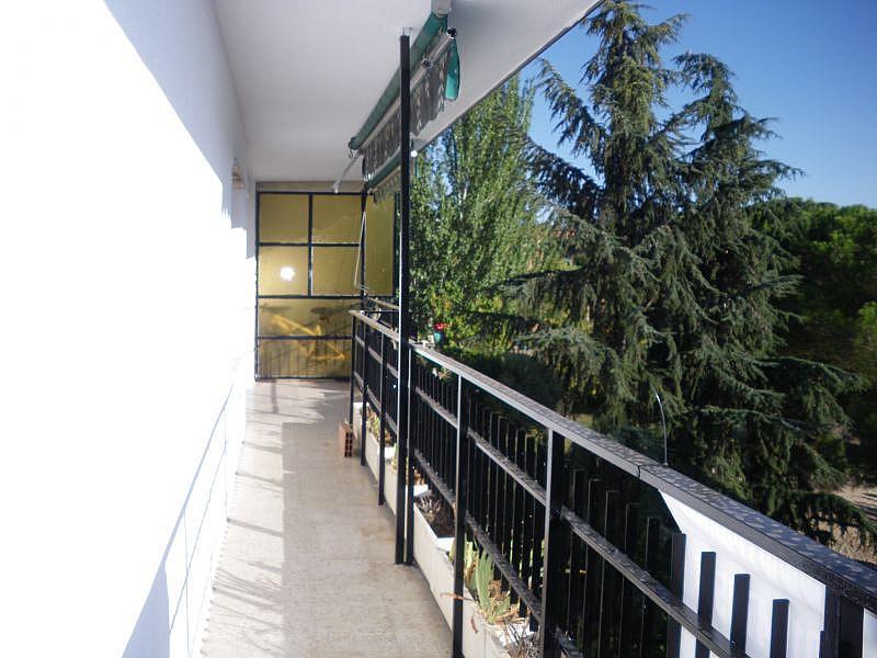 Foto - Dúplex en alquiler en calle Tamarindo, Coimbra-Guadarrama en Móstoles - 326424674
