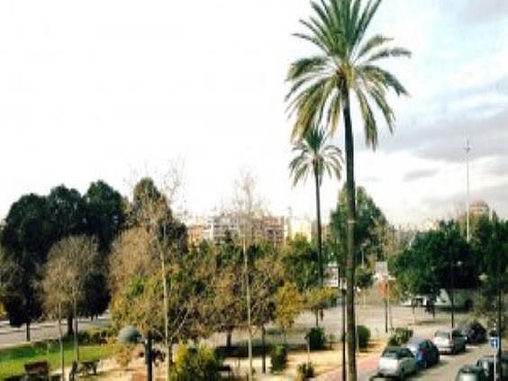 Oficina en alquiler en Penya-Roja en Valencia - 272250940
