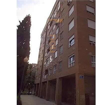 Oficina en alquiler en Ciutat de les Arts i les Ciències en Valencia - 327152882