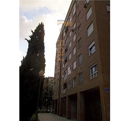 Oficina en alquiler en Ciutat de les Arts i les Ciències en Valencia - 327152885