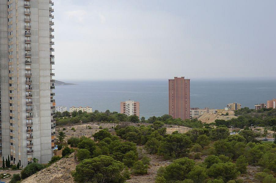 Foto - Apartamento en alquiler en calle Adolfo Suarez, Poniente en Benidorm - 325610443