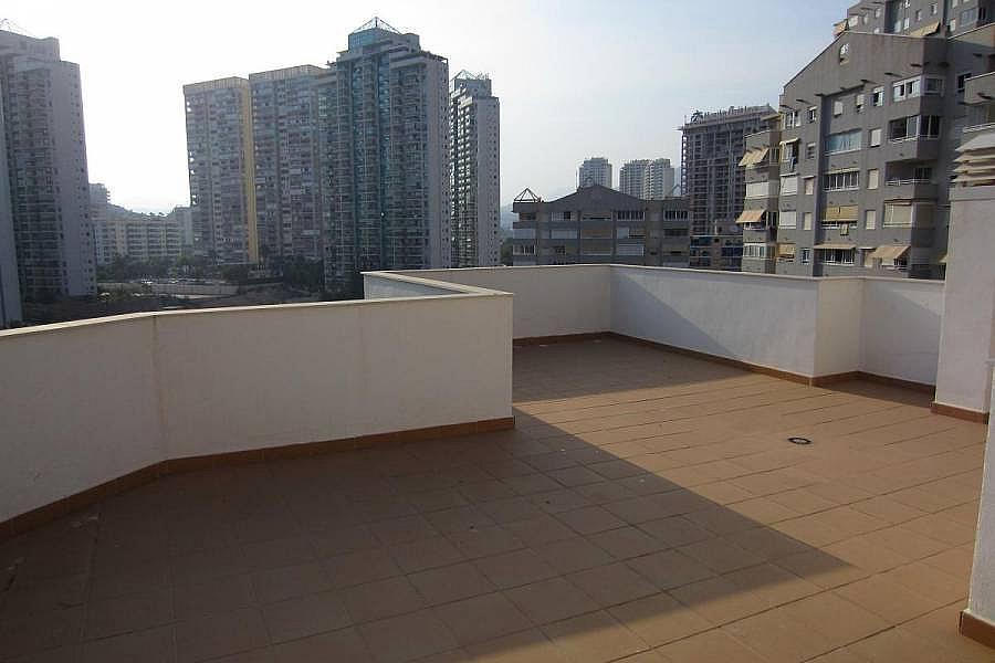 Foto - Ático en alquiler en calle Marina Baixa, Finestrat - 196294489