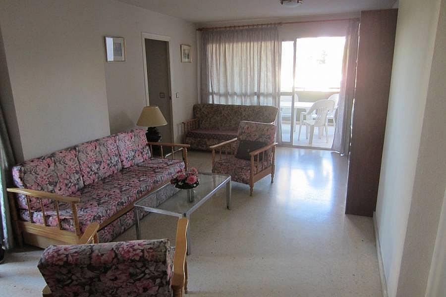 Foto - Piso en alquiler en calle Denia, Poniente en Benidorm - 196292323