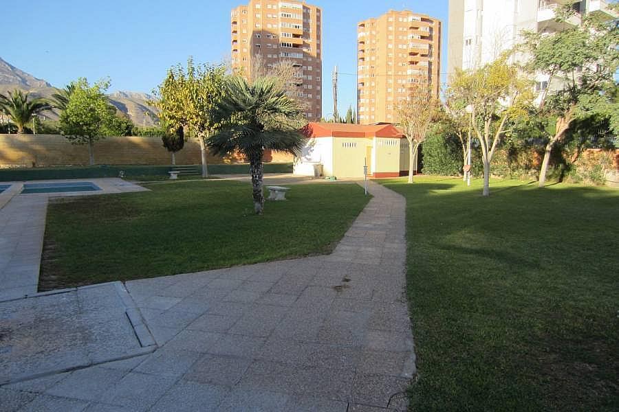 Foto - Piso en alquiler en calle Denia, Poniente en Benidorm - 196292341
