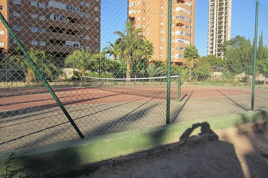 Foto - Piso en alquiler en calle Denia, Poniente en Benidorm - 196292353