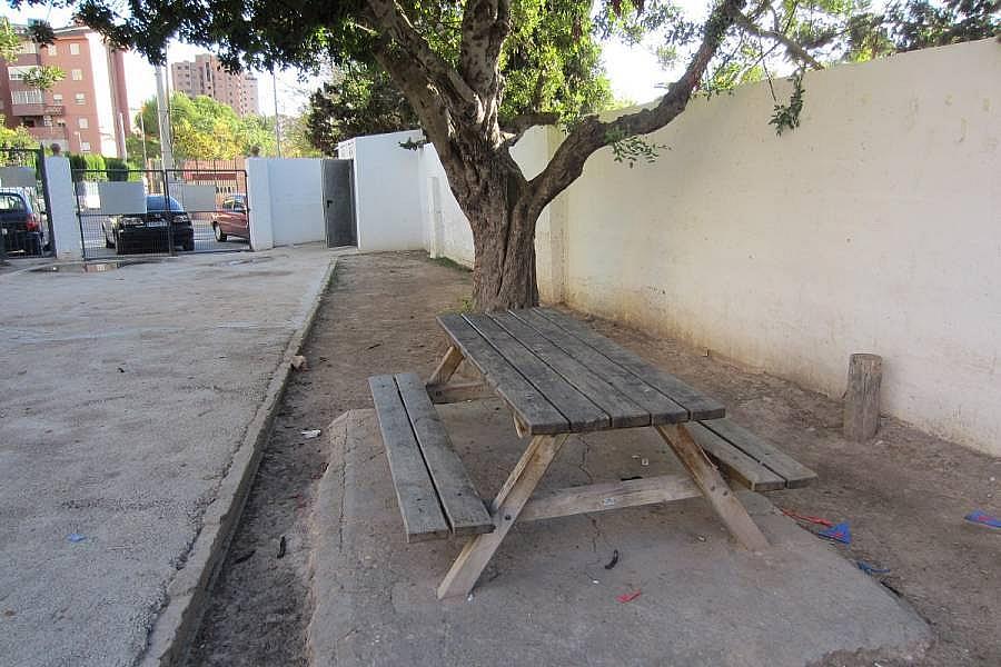 Foto - Piso en alquiler en calle Denia, Poniente en Benidorm - 196292356