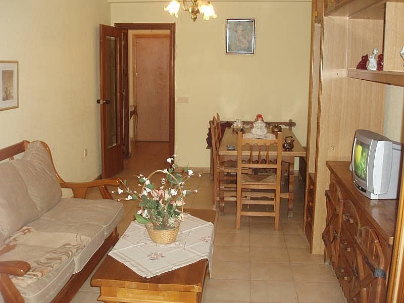 Foto - Piso en alquiler en calle Urugüai, Poniente en Benidorm - 196290793