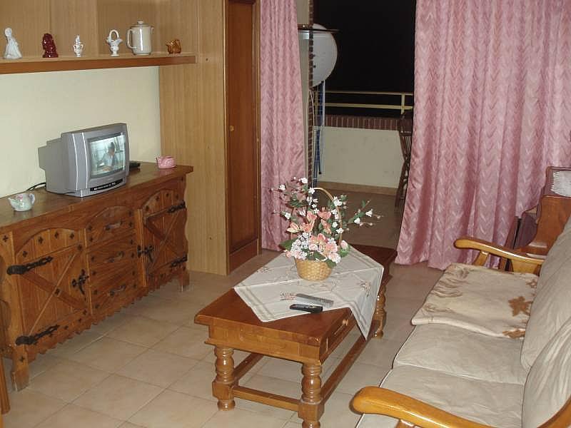 Foto - Piso en alquiler en calle Urugüai, Poniente en Benidorm - 196290796