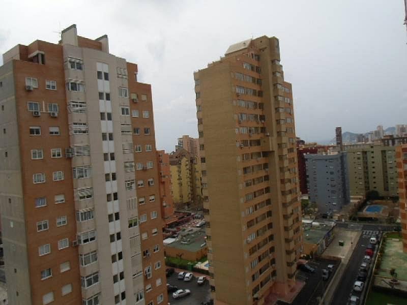 Foto - Apartamento en alquiler en calle Dinamarca, Benidorm - 196290823