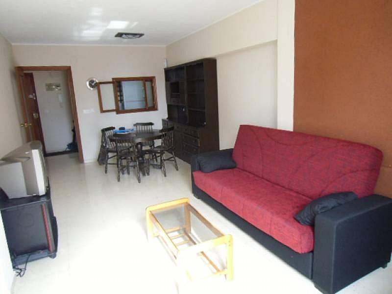 Foto - Apartamento en alquiler en calle Dinamarca, Benidorm - 196290835