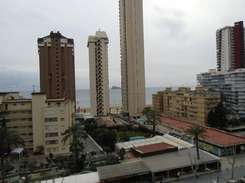 Foto - Apartamento en alquiler en calle Mediterraneo, Benidorm - 196290946