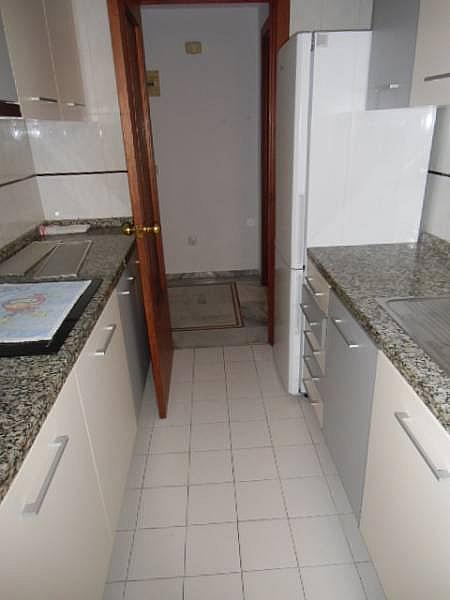 Foto - Apartamento en alquiler en calle Mediterraneo, Benidorm - 196290955