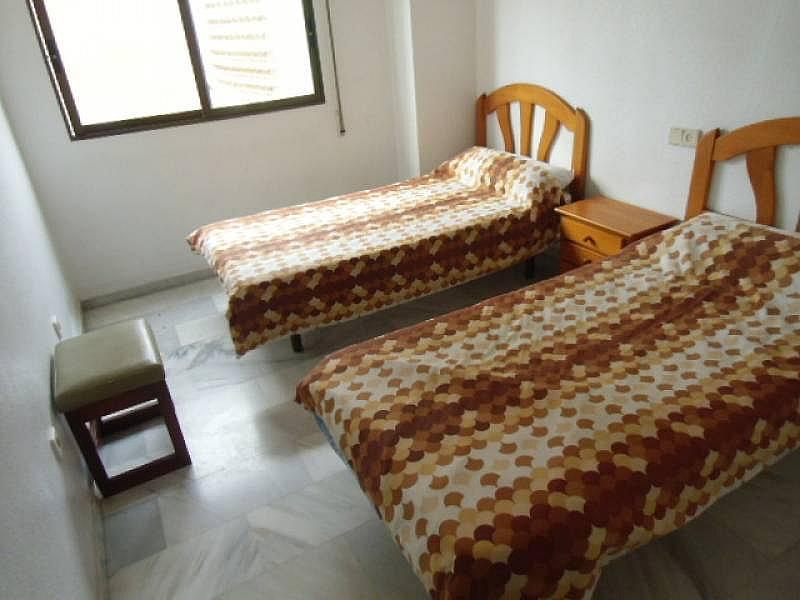 Foto - Apartamento en alquiler en calle Mediterraneo, Benidorm - 196290961
