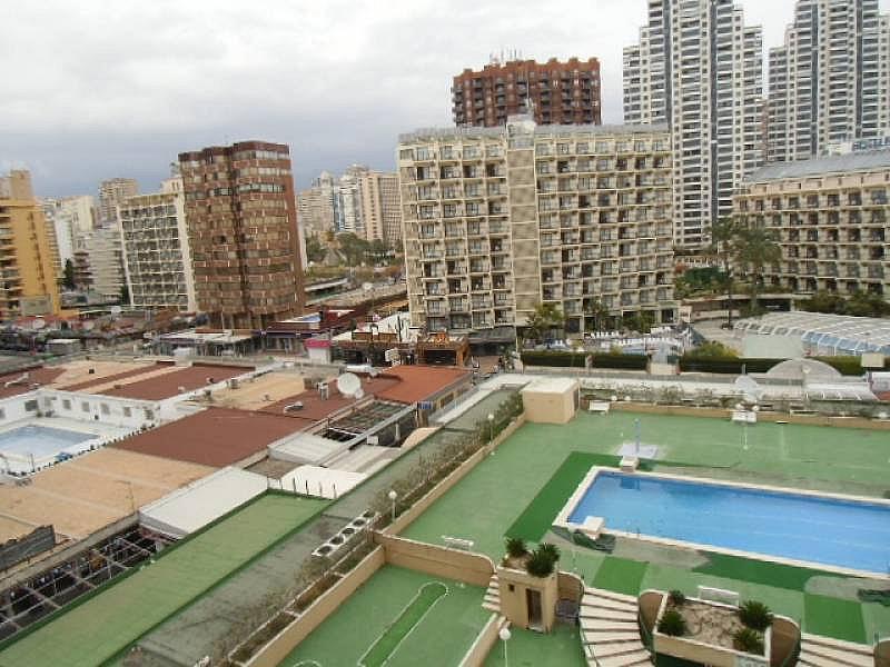 Foto - Apartamento en alquiler en calle Mediterraneo, Benidorm - 196290973