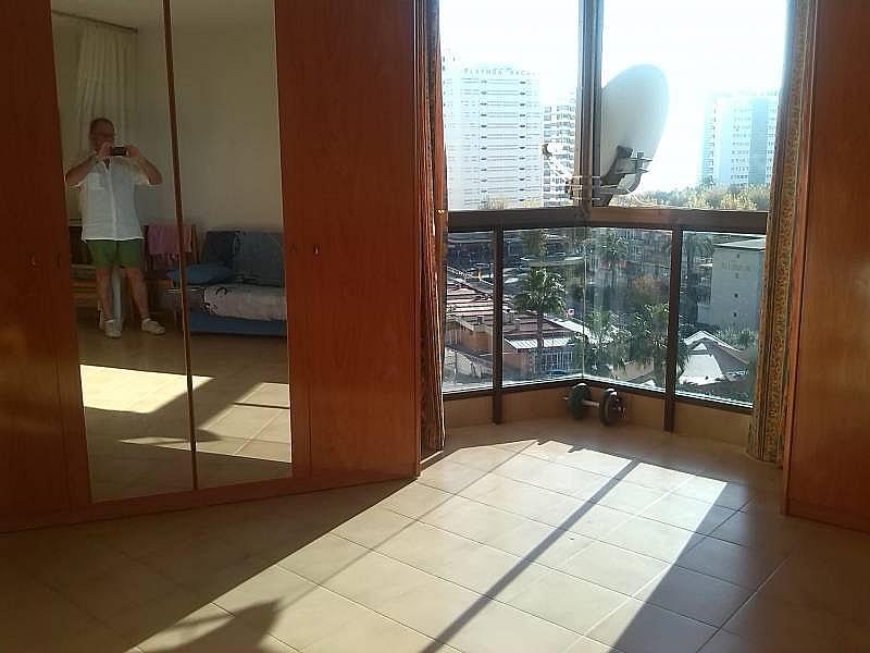 Foto - Apartamento en alquiler en calle Levante, Benidorm - 196291039