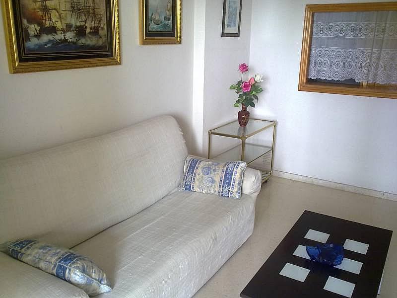Foto - Apartamento en alquiler en calle Avda Benissa, Poniente en Benidorm - 196291243