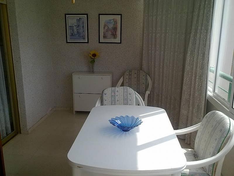 Foto - Apartamento en alquiler en calle Avda Benissa, Poniente en Benidorm - 196291246