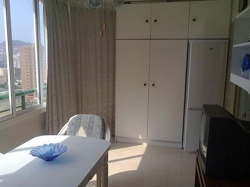 Foto - Apartamento en alquiler en calle Avda Benissa, Poniente en Benidorm - 196291258