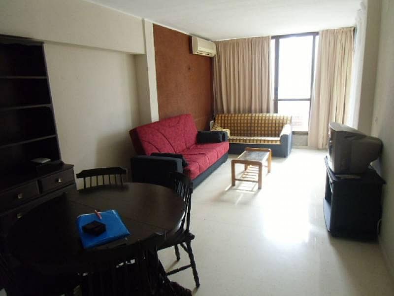 Foto - Apartamento en alquiler en calle Dinamarca, Benidorm - 196291834