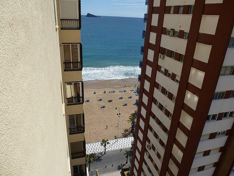 Foto - Apartamento en alquiler en calle Alcoy, Levante en Benidorm - 196291921