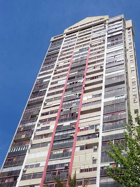 Foto - Apartamento en venta en calle Irlanda, Benidorm - 196292704