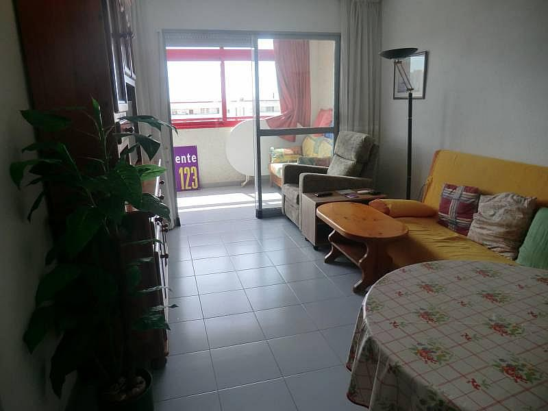 Foto - Apartamento en venta en calle Irlanda, Benidorm - 196292707