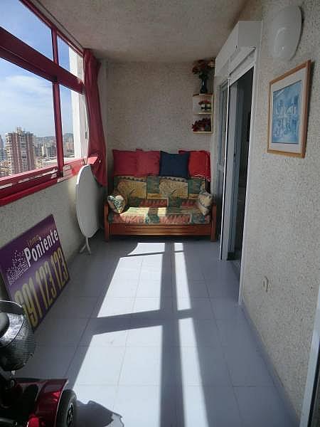 Foto - Apartamento en venta en calle Irlanda, Benidorm - 196292716