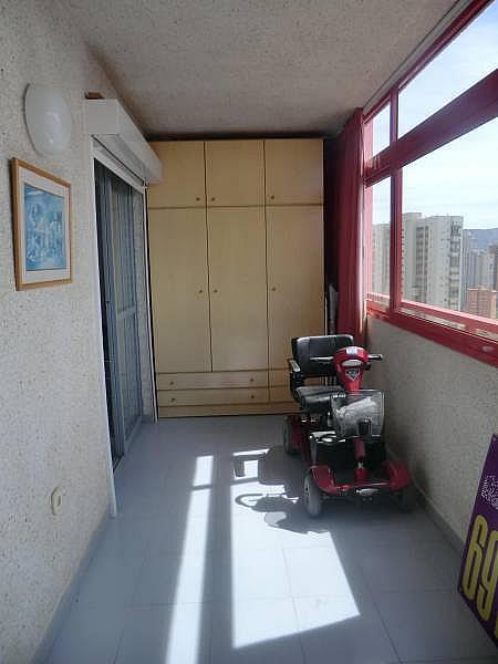 Foto - Apartamento en venta en calle Irlanda, Benidorm - 196292719