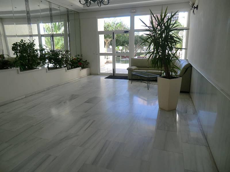 Foto - Apartamento en alquiler en calle Marina Baixa, Finestrat - 196293568