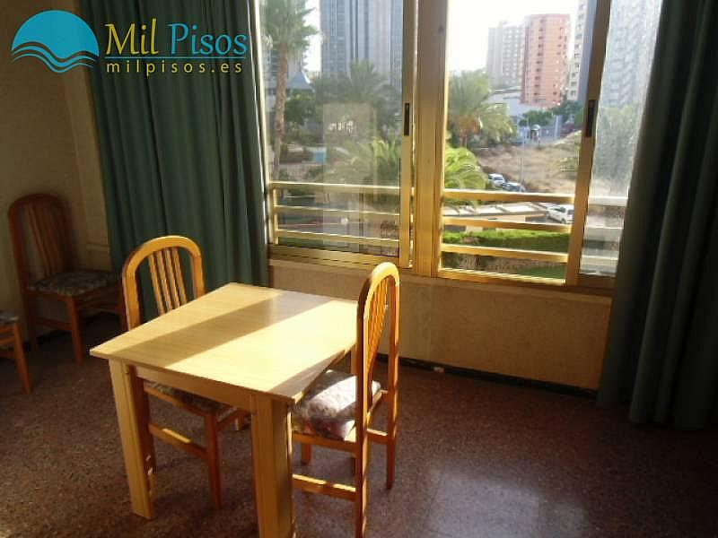 Foto - Apartamento en alquiler en calle Altea, Finestrat - 196293787