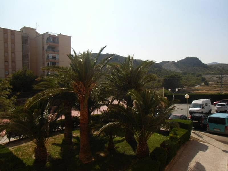 Foto - Apartamento en alquiler en calle Urbsainvi, Villajoyosa/Vila Joiosa (la) - 261815268
