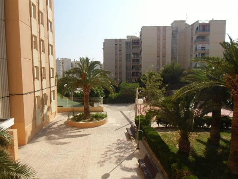 Foto - Apartamento en alquiler en calle Urbsainvi, Villajoyosa/Vila Joiosa (la) - 261815271