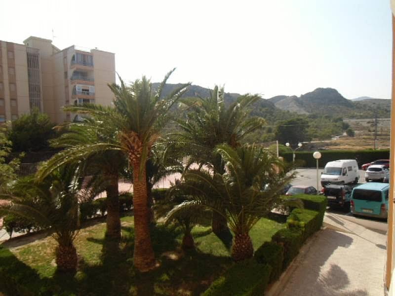 Foto - Apartamento en alquiler en calle Urbsainvi, Villajoyosa/Vila Joiosa (la) - 261815274