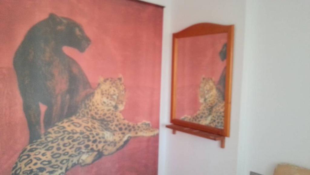 Foto - Apartamento en alquiler en calle Badiola, Villajoyosa/Vila Joiosa (la) - 196296724