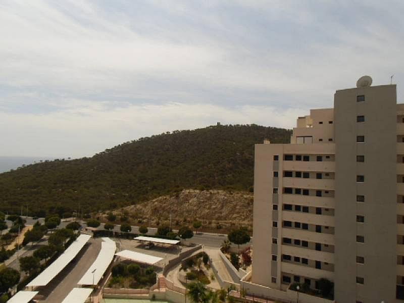Foto - Apartamento en alquiler en calle Mestral, Villajoyosa/Vila Joiosa (la) - 196298686