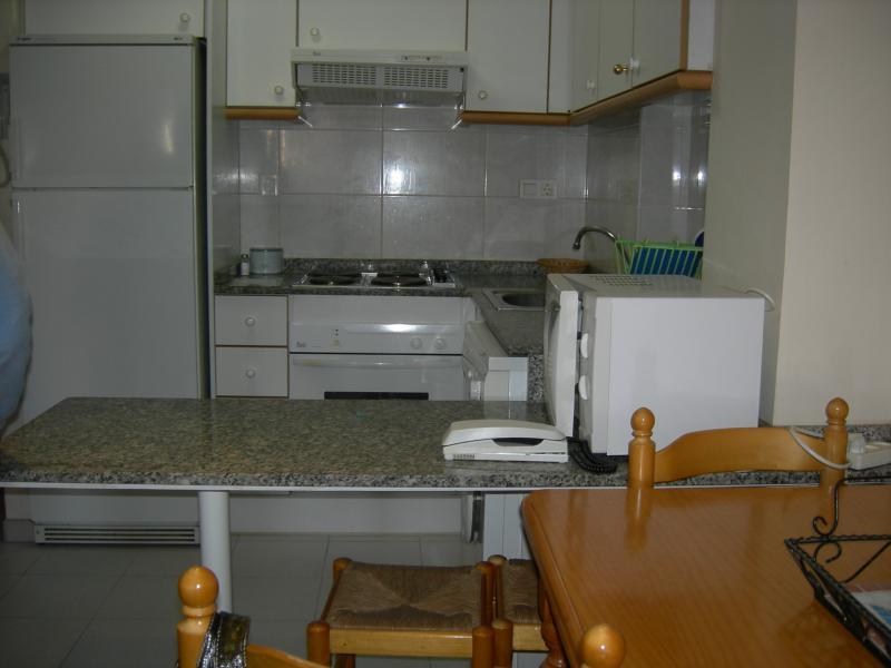 Apartamento en alquiler en calle Jose Segrelles, Raco de Mar-Playa de Canet en Canet d´En Berenguer - 114844160