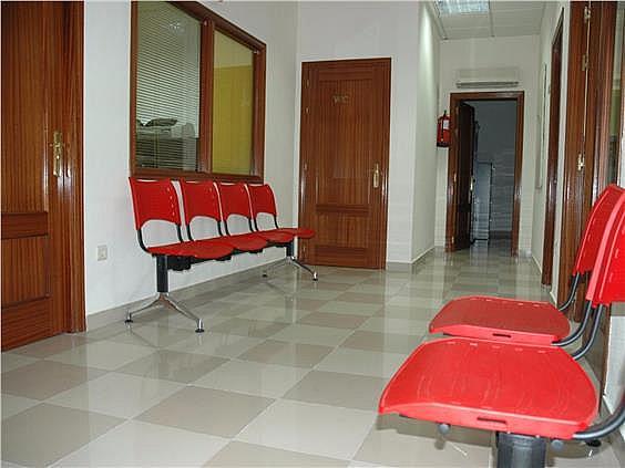 Local en alquiler en calle Lirio, Ciudad Real - 293669441