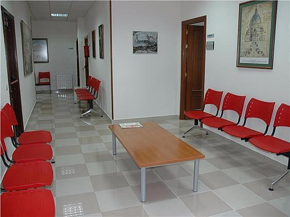 Local en alquiler en calle Lirio, Ciudad Real - 293669444