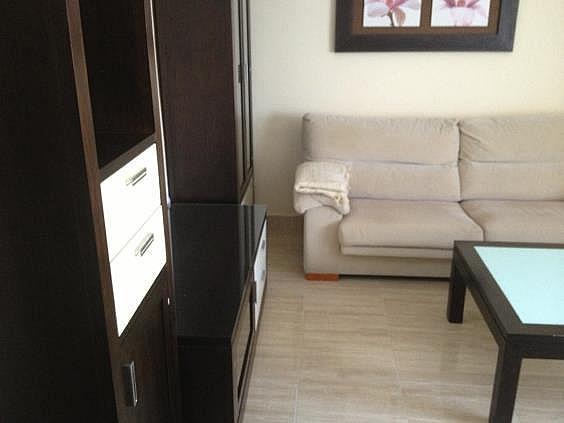 Piso en alquiler en Puertollano - 293710721